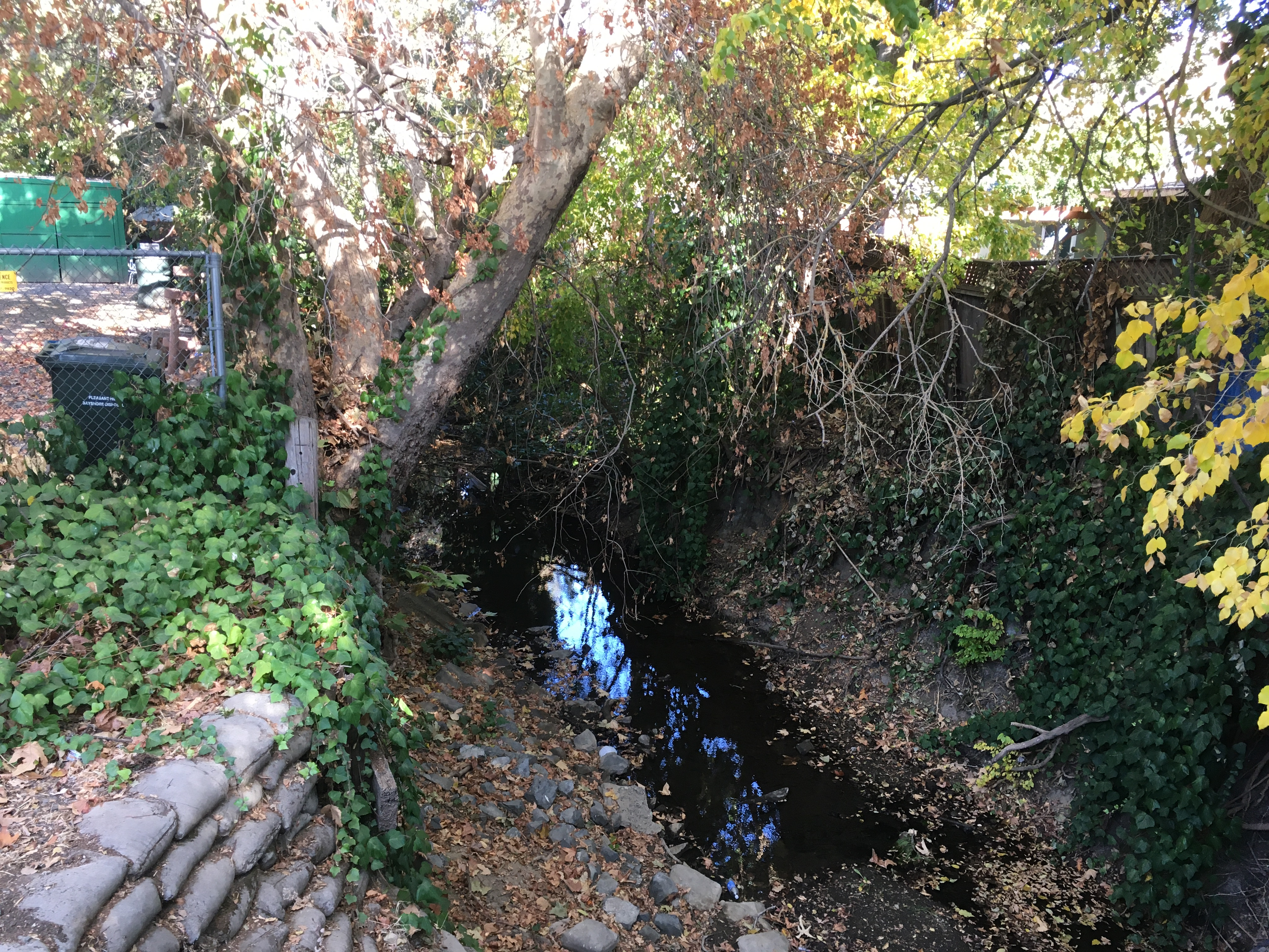 Alhambra Creek site monitored by The Watershed Project