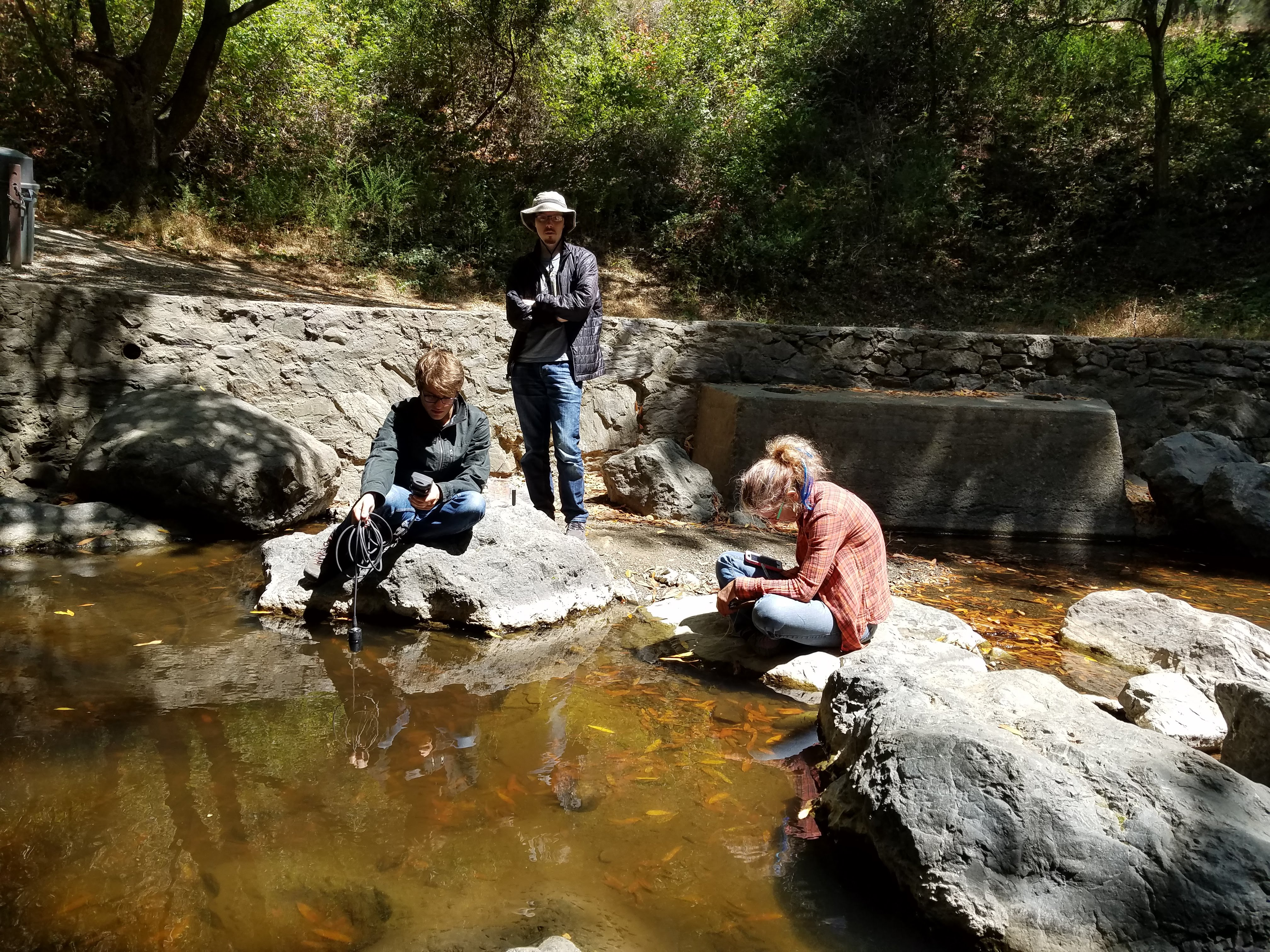 The Watershed Project staff and volunteers monitor Wildcat Creek site
